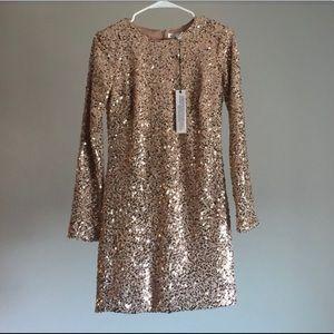 Dress The Population sequin dress!!